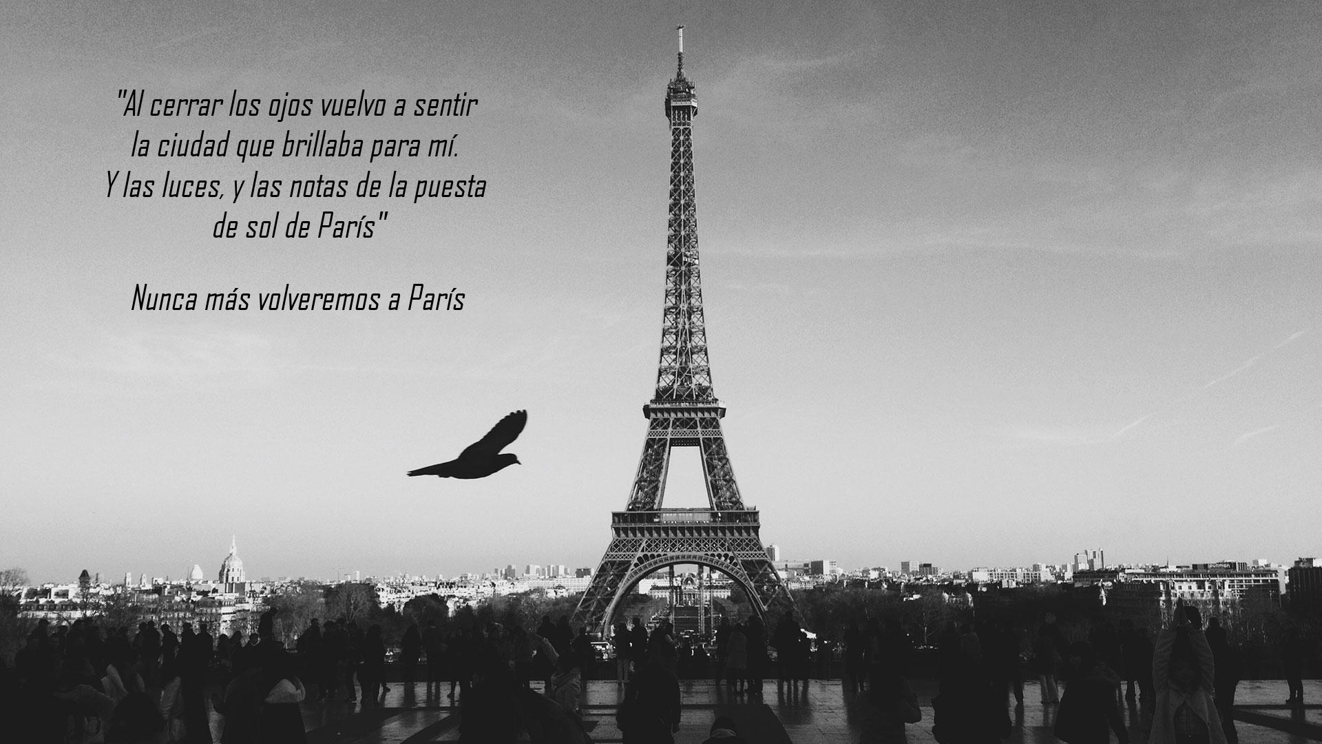 París81